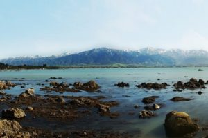 kaikoura_ocean_to_alps